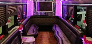 st louis party bus rental